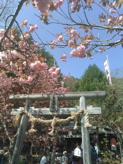 Shizuka Oyama Gladden