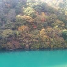 Otaki River