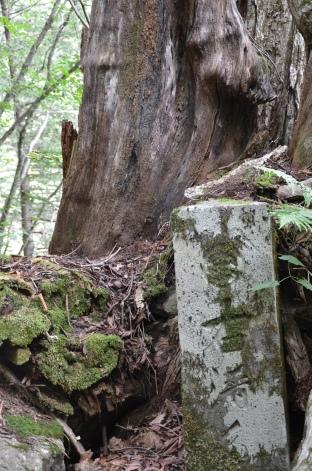 Trail marker, 1800s