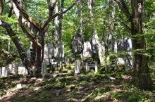Reihi-gun in a grove